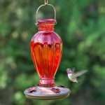 Best Hummingbird Feeder: Perky Pet 8133 2